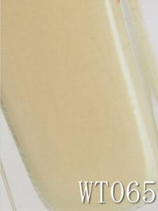 ネイルホリックリミテッドカラー2021_WT065_02